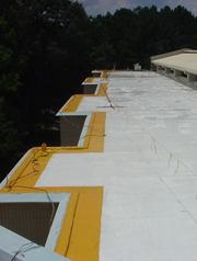 Copolymer Roof Coatings ...